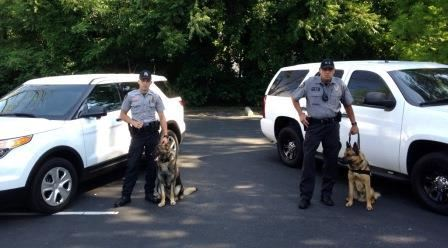 K-9s and Their Handlers