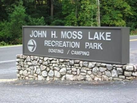 Main Entrance Sign